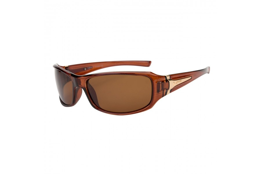 Harley - Brown Mens Sports Sunglasses